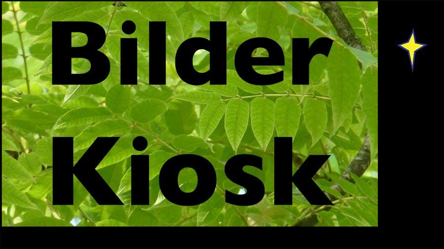 Logo Bilder-Kiosk 900